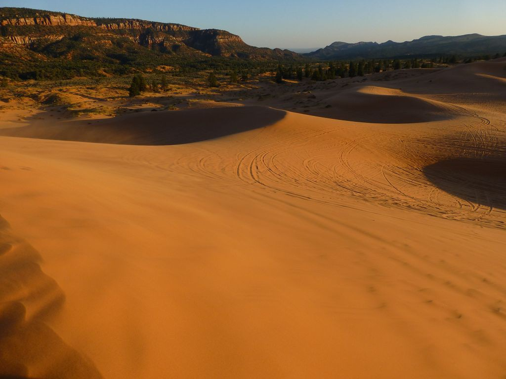 20120930 086 Coral_Pink_Sand_Dunes_State_Park