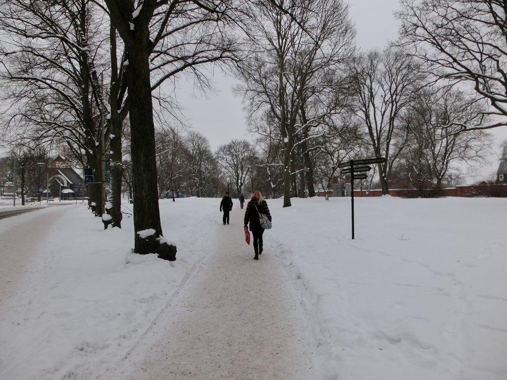 20130126 011 Stockholm Djurgarden