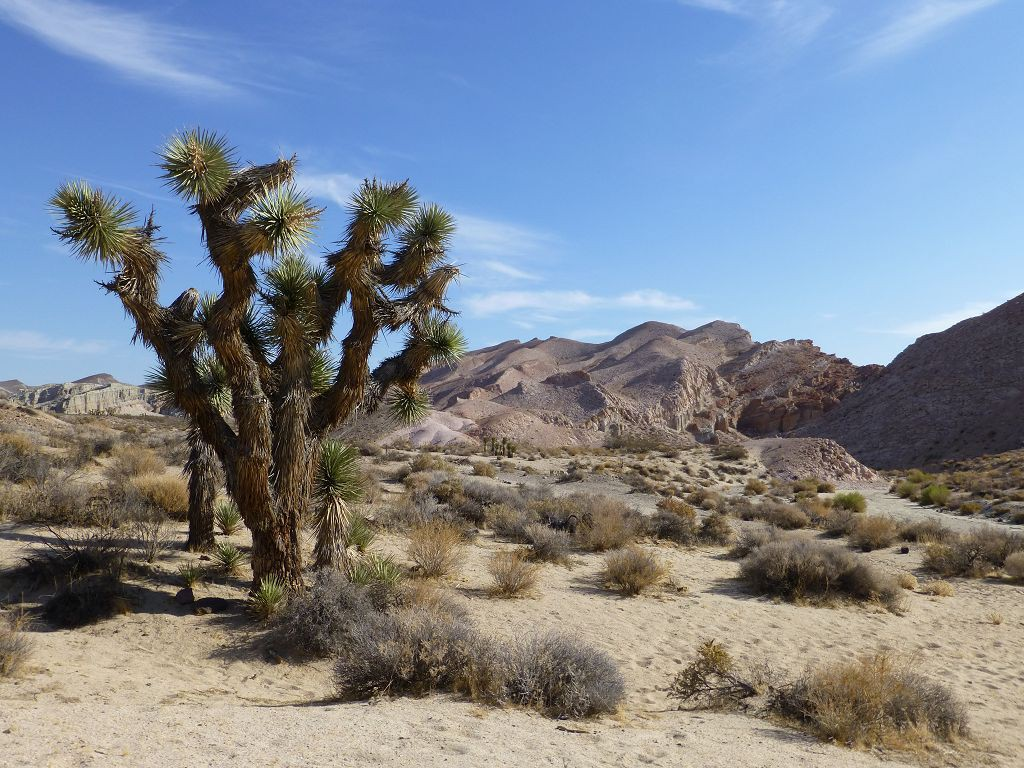 20120928 051 Red_Rock_Canyon_State_Park